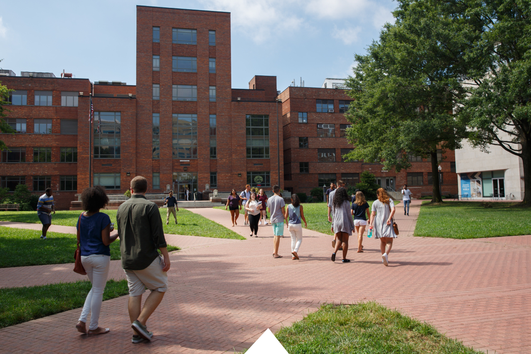 Students walking through University Yard on a sunny day